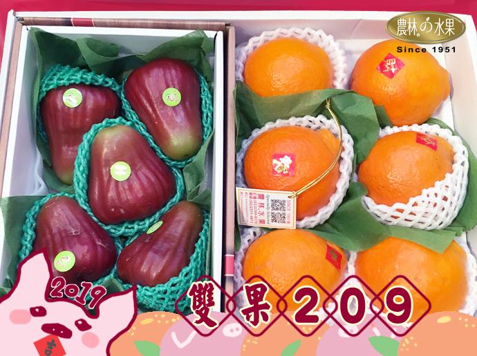 年節禮盒 過年禮盒推薦 過年送禮