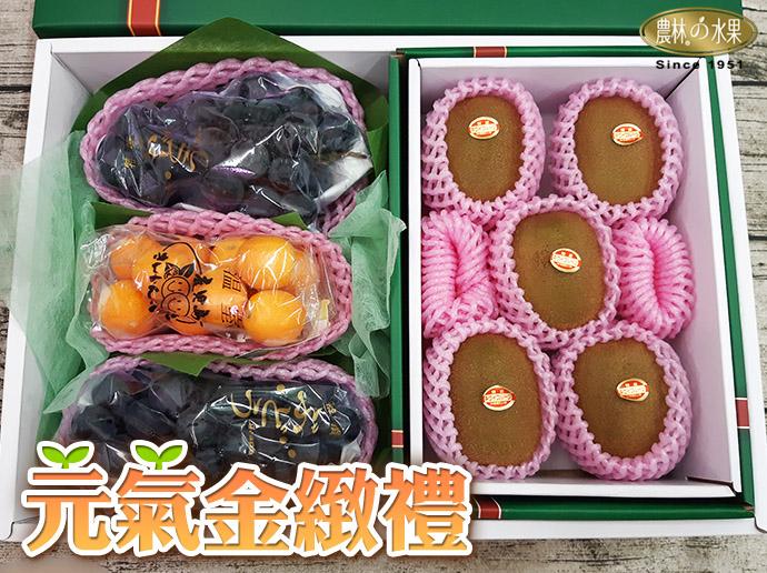 巨峰葡萄 鹿兒島小金桔 高級水果禮盒