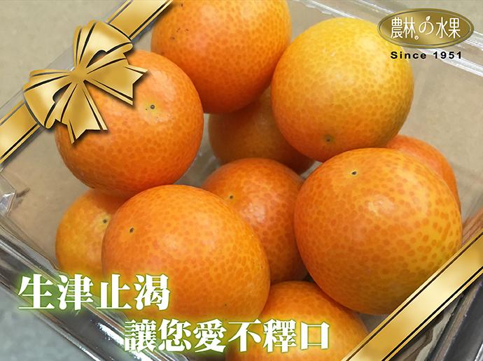 日本金桔 日本水果 過年水果