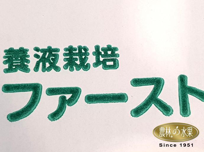 日本水蜜桃 日本水蜜桃產季 日本水果 日本水果 日本水蜜桃 日本水果水蜜桃 日本水果禮盒 日本葡萄 日本蘋果 日本水梨 日本草莓 日本水果產季 日本哈密瓜