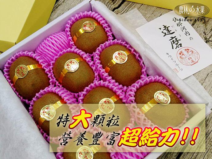 達摩奇異果 日本奇異果 日本水果