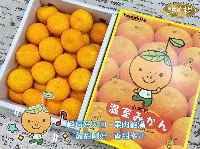 日本水果日本溫室小蜜柑日本小蜜柑進口水果禮盒當季高級水果禮盒日本進口水果禮盒網購高級進口水果禮盒宅配送禮推薦