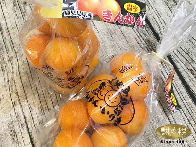 日本金桔 新年禮盒 新年禮盒2019
