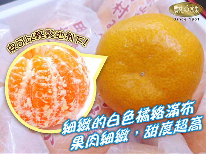 日本蜜柑 日本水果 日本和歌山