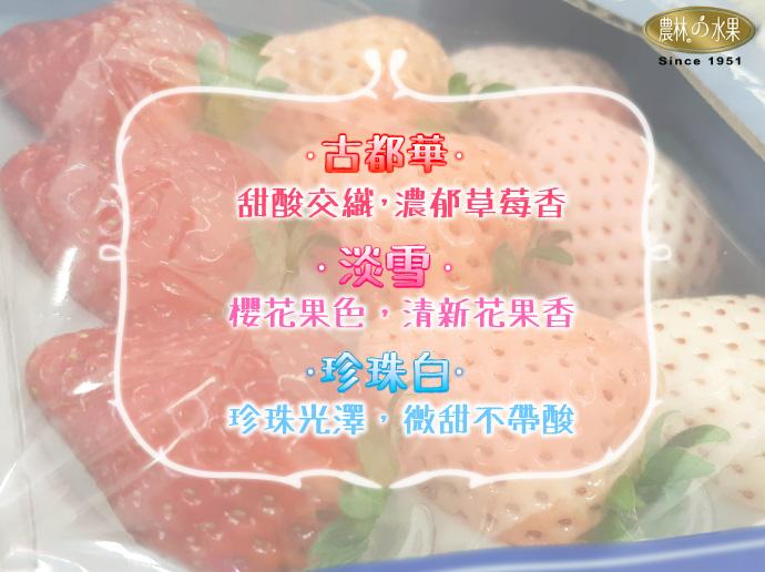 日本三色草莓 高級草莓 日本草莓