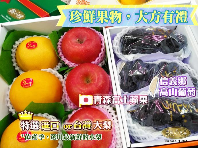 日本青森蘋果 水果禮盒推薦 高級水果禮盒