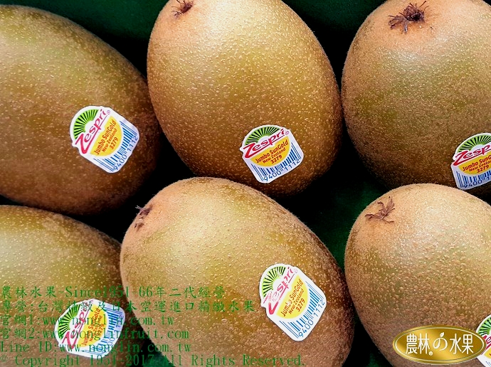 黃金奇異果 紐西蘭奇異果 進口水果禮盒