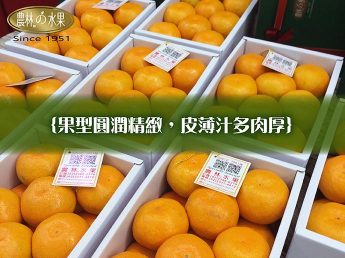 日本水果禮盒 日本小蜜柑 日本蜜柑 日本溫室小蜜柑