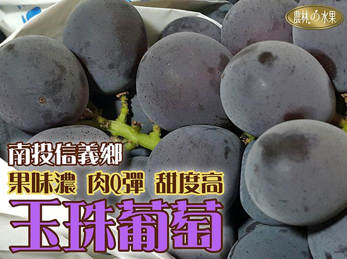 台灣葡萄 巨峰葡萄產季 台灣水果