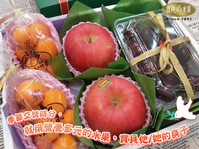 日本金桔 青森富士蘋果 紐西蘭櫻桃