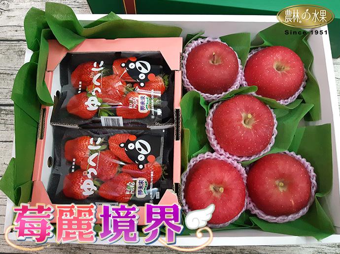 日本草莓 青森蘋果 日本水果