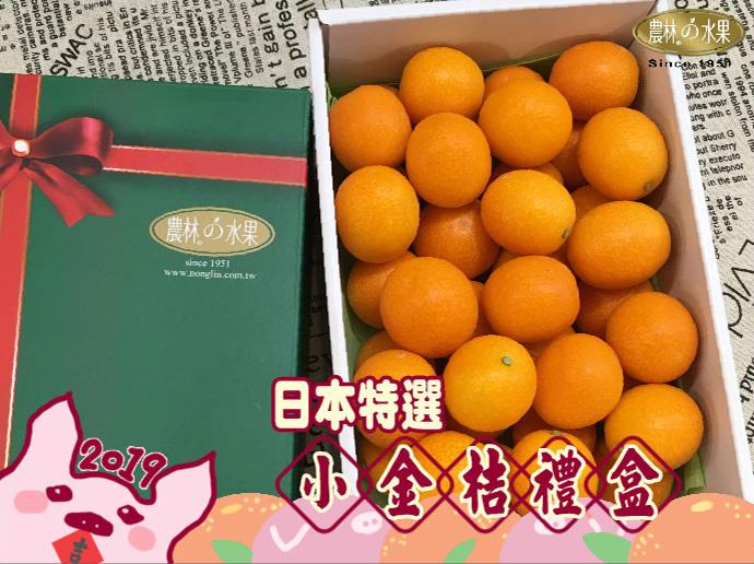 日本金桔 過年禮盒推薦 年節伴手禮