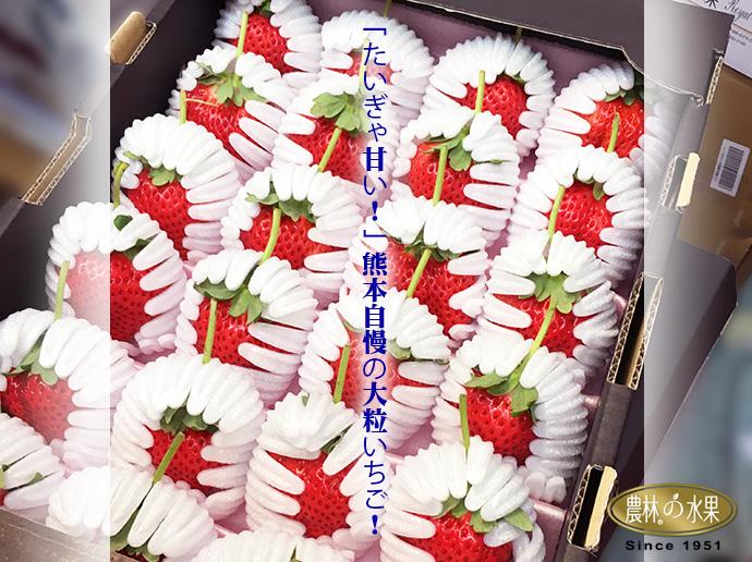 糖蜜草莓 日本草莓 進口草莓