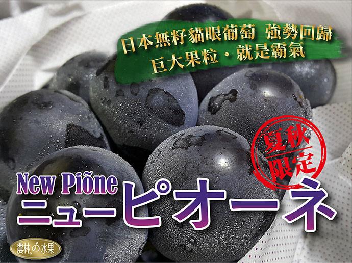 日本貓眼葡萄 日本進口水果 當季水果禮盒