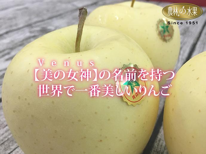 日本青森蘋果 金星蘋果 蘋果禮盒
