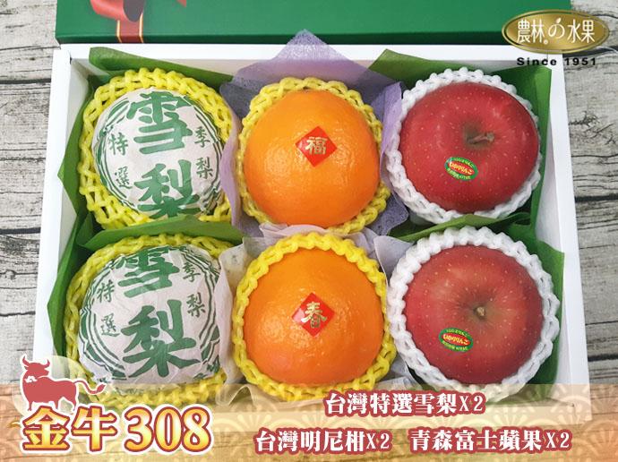 2021年春節水果禮盒 日本水果禮盒 2021年春節過年日本水果禮盒 日本進口水果禮盒 2021年當季水果伴手禮盒