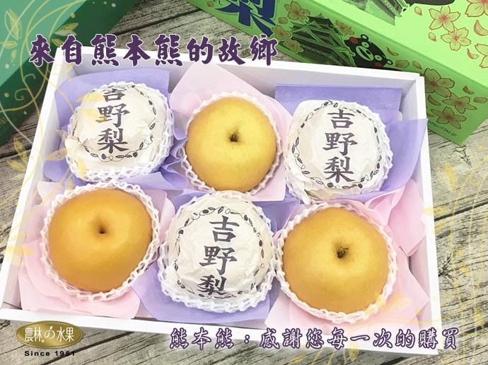 日本吉野梨 日本水梨 日本進口水果