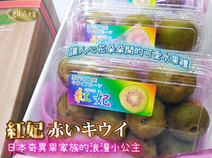 日本紅妃奇異果 日本進口水果  探病水果禮盒
