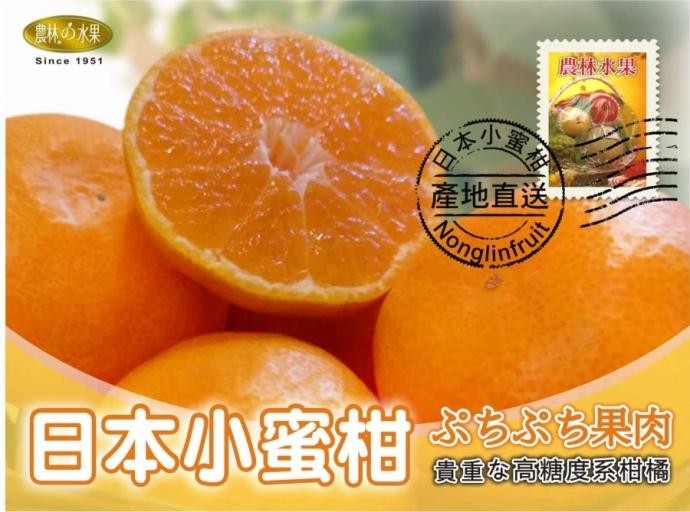 中秋水果禮盒 中秋送禮推薦 日本小蜜柑